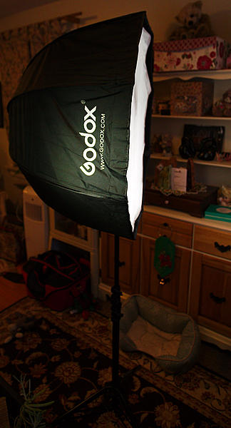 Post your latest purchases.-dsc_5887-new-godox-softbox-feb2018-0001.jpg
