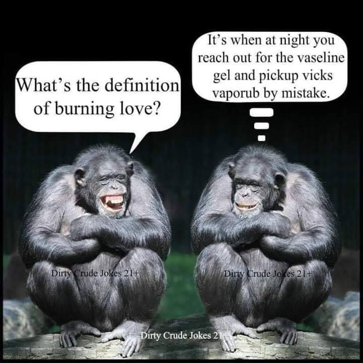 Dumb Jokes Posted Here.... if you dare.-love.jpg