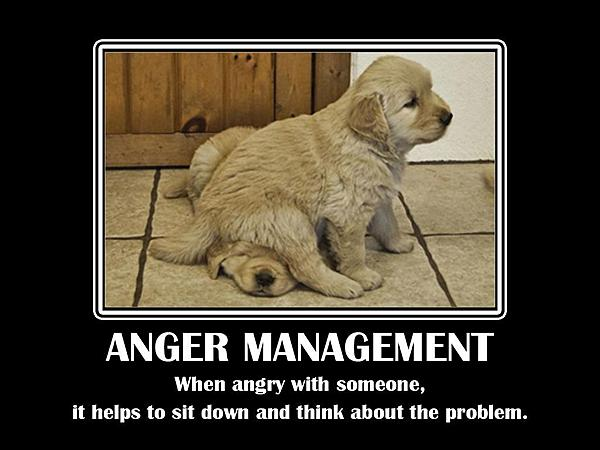 Dumb Jokes Posted Here.... if you dare.-1385097357-funny-anger-quotes_011.jpg