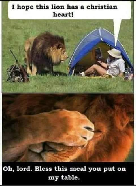 Dumb Jokes Posted Here.... if you dare.-lion.jpg