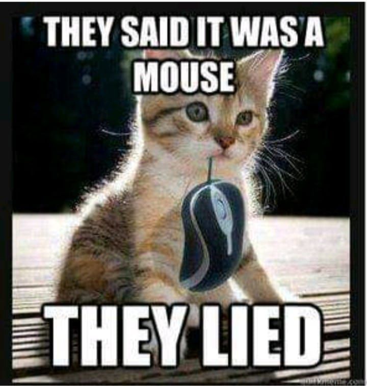 Dumb Jokes Posted Here.... if you dare.-mouse.jpg