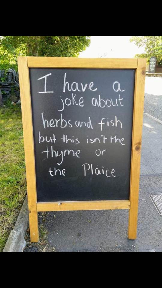 Dumb Jokes Posted Here.... if you dare.-thyme.jpg
