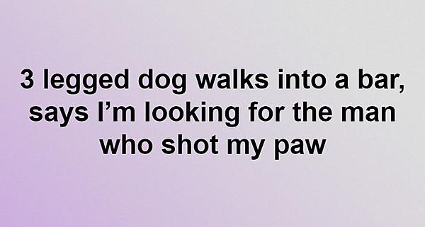 Dumb Jokes Posted Here.... if you dare.-paw.jpg