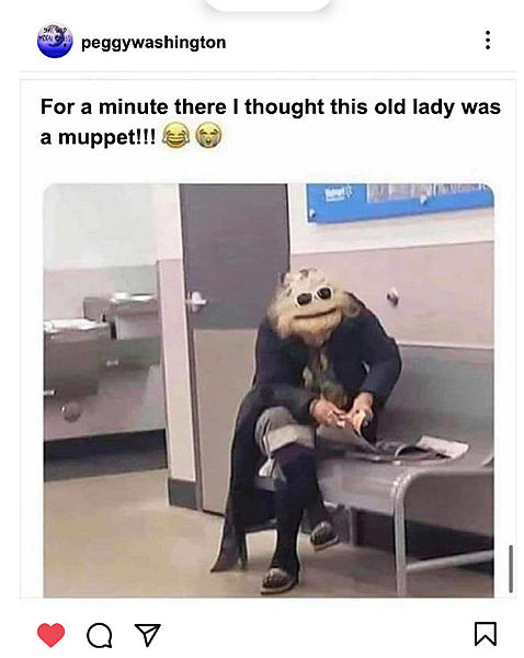 Dumb Jokes Posted Here.... if you dare.-muppet.jpg