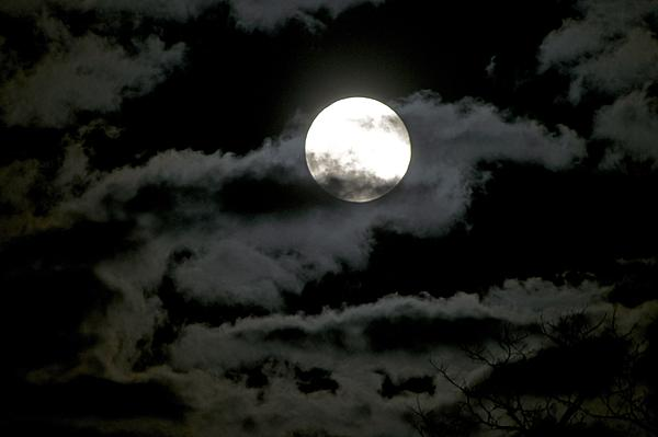 Full Moon-moon-jan19th-2sm.jpg