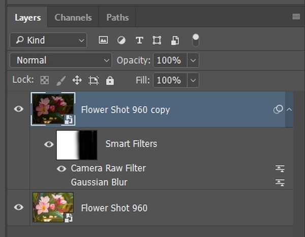 Smart Objects: when to convert?-smart-layer-acr-only-detail.jpg