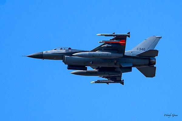 Woody's 2017 Wildlife, Nature and Other Stuff-f-16-201.jpg