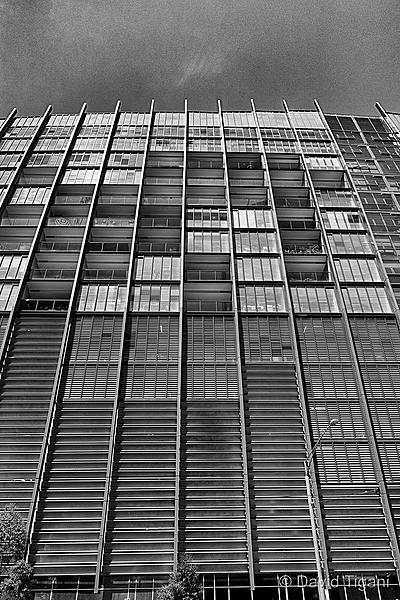 DT's Project 365 for 2013-dsc_3818_3915.jpg