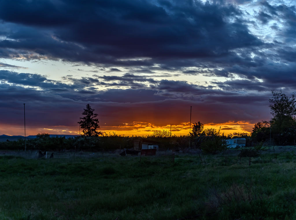 Pup's place 2019-750_1058-hdr-pano.jpg