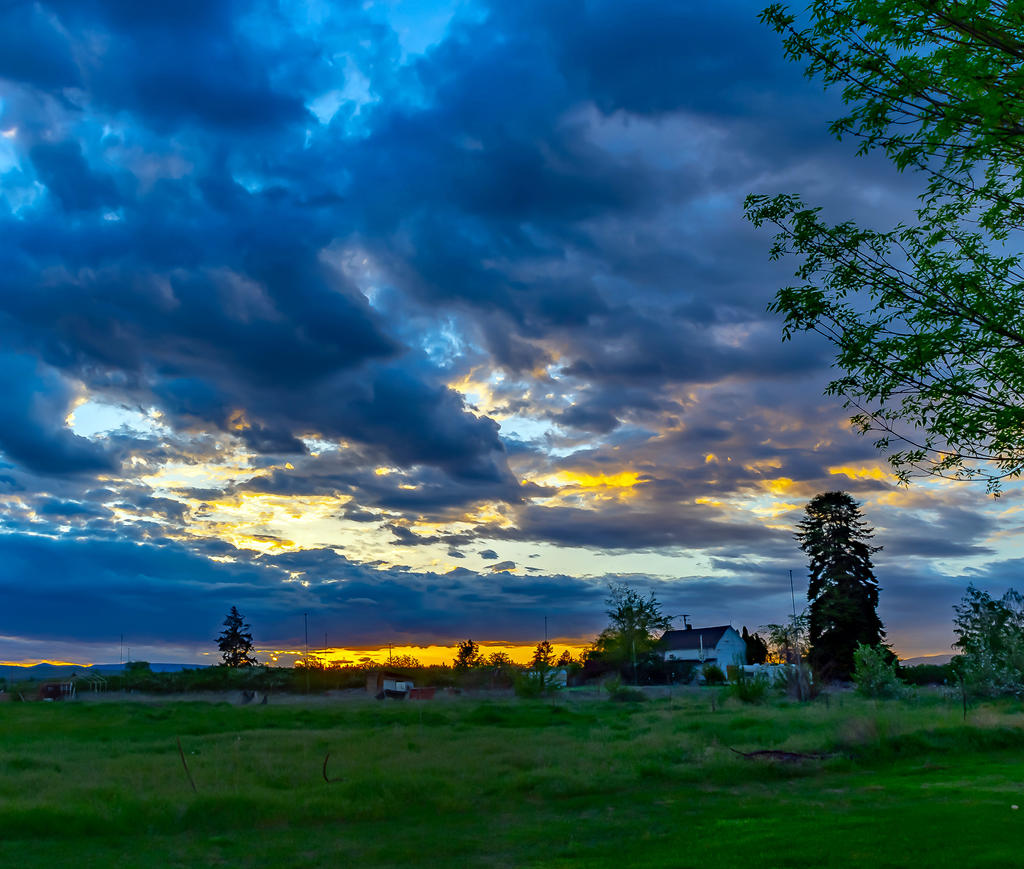 Pup's place 2019-710_1286-hdr-pano.jpg