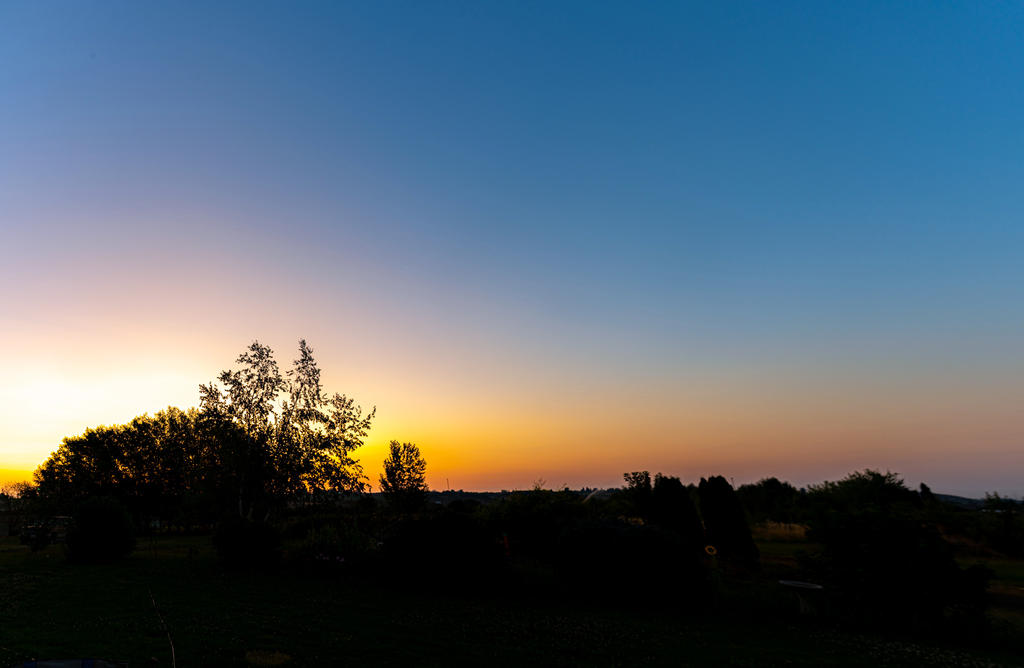 Pup's place 2019-750_4356-hdr-pano.jpg
