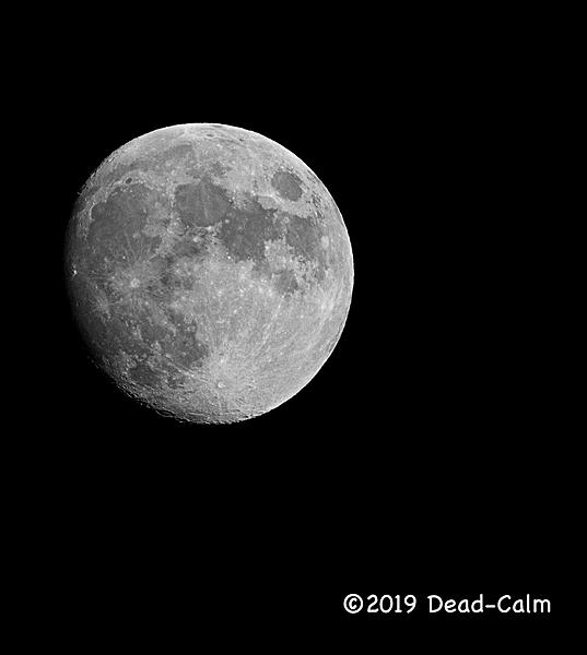 Dawg Pics' New Adventures of the D500 (and maybe the D300)-moon.jpg