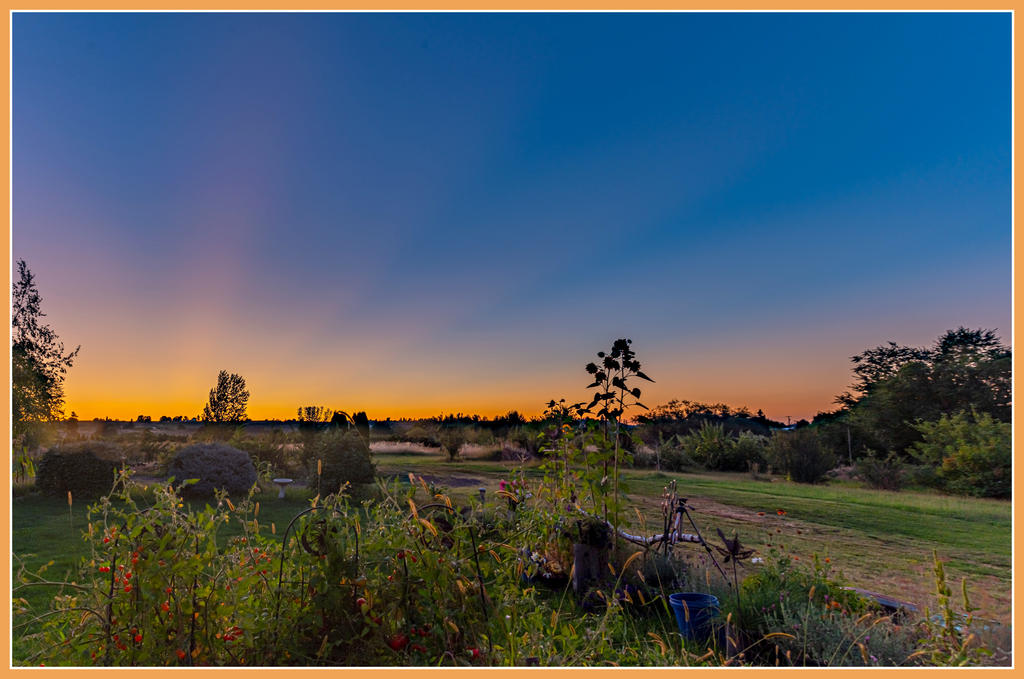 Pup's place 2019-750_5271-hdr-pano.jpg