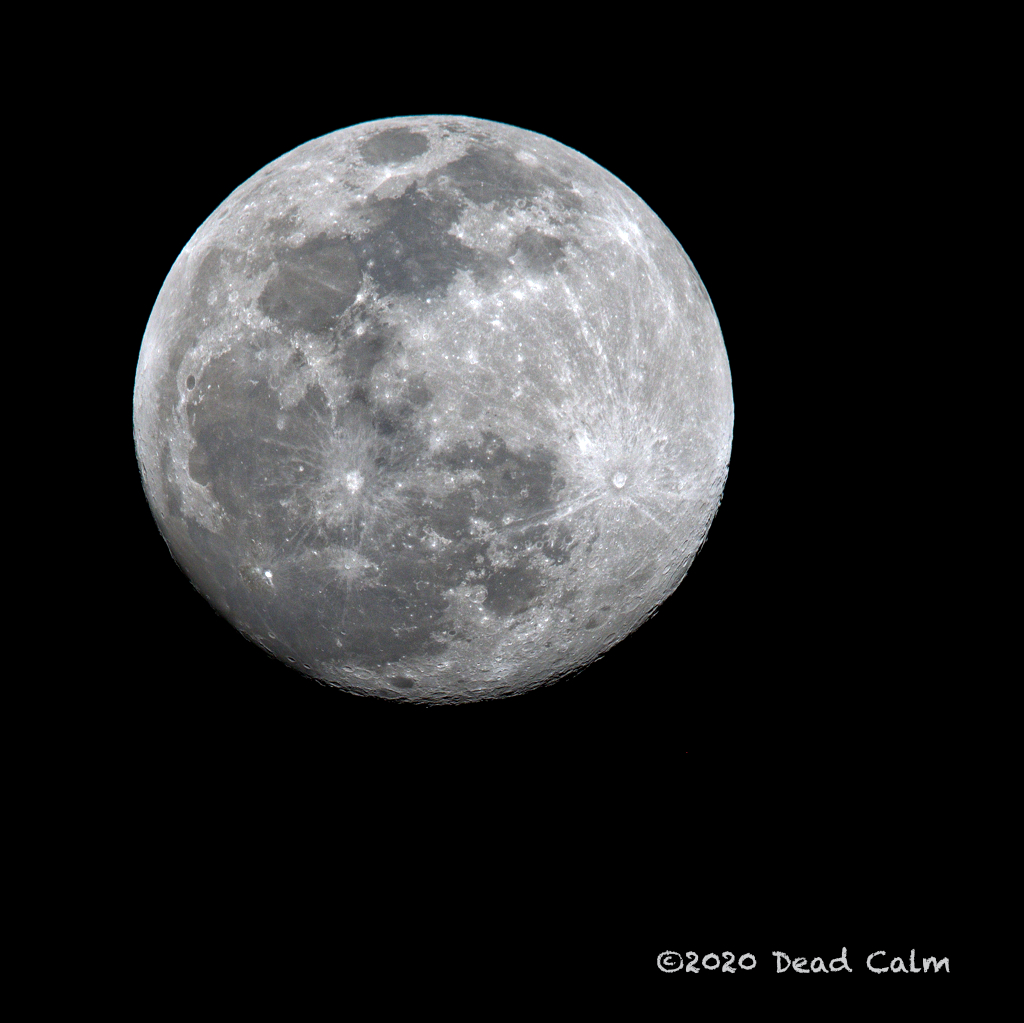 Dawg Pics' New Adventures of the D500 (and maybe the D300)-waxing-gibbous-moon-hi-res-fb-500_1555.jpg