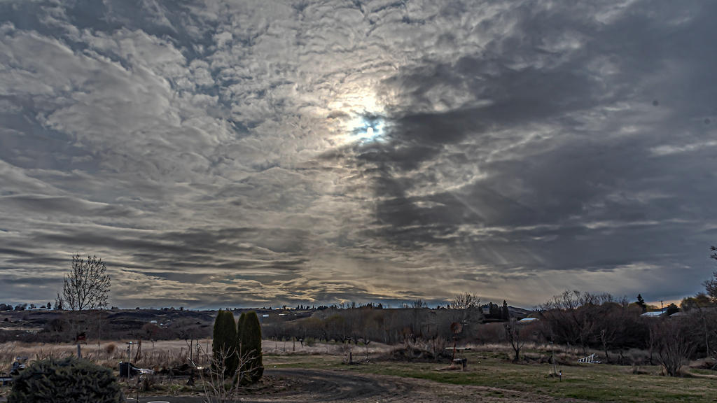 Pup's 2020 photo adventures-750_1996-hdr-edit.jpg
