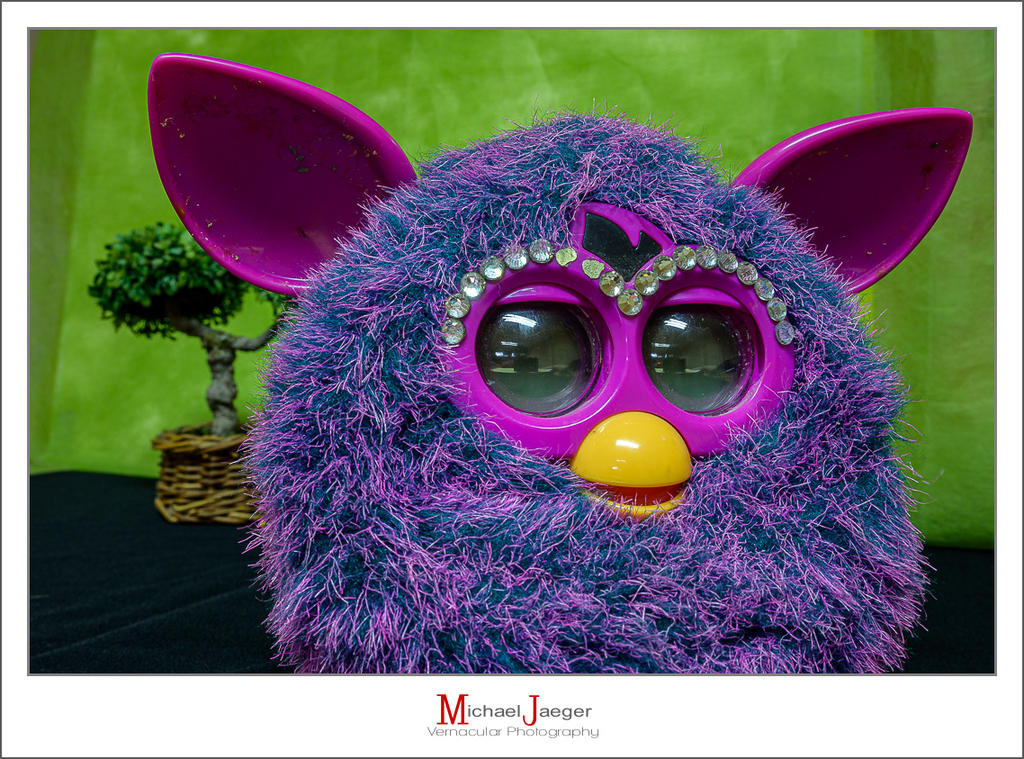 Michael's Random Photos-furby-1.jpg