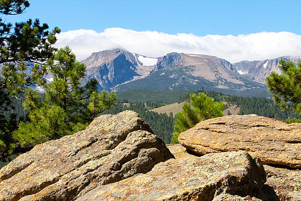 Woody's 2020 Adventure-halletflattop-500.jpg
