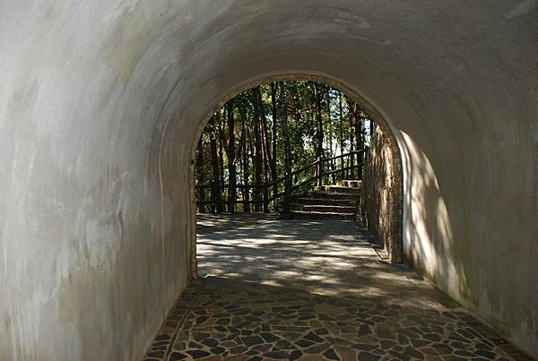 Michael's Captured Impressions-tunnel.jpg