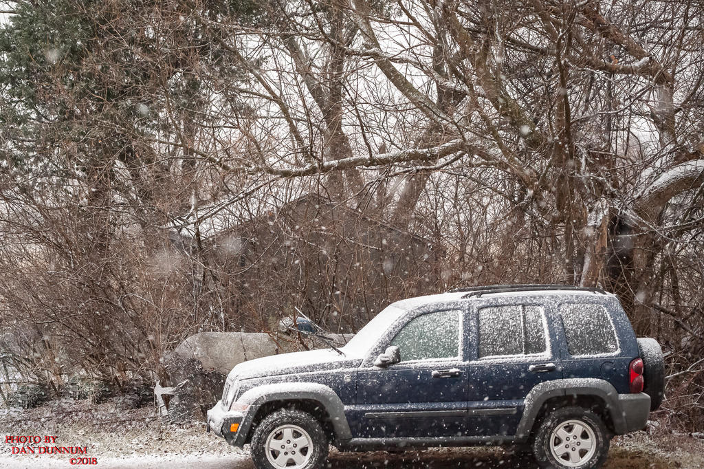 Danno's 365 for 2018 Going to Give it a Shot Again...-first-snow-0437.jpg