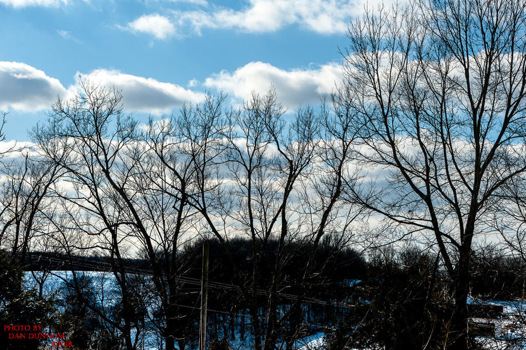 Danno's 365 for 2018 Going to Give it a Shot Again...-blue-winter-skies-0454.jpg