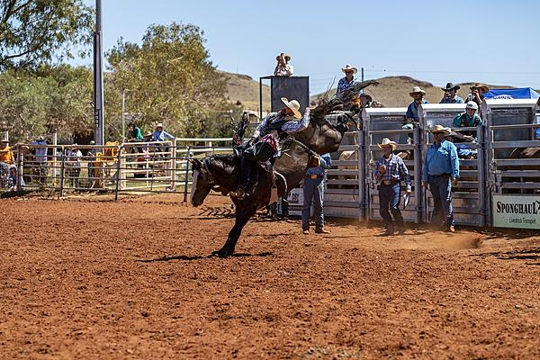 Rodeo With My D850-rodeo.jpg