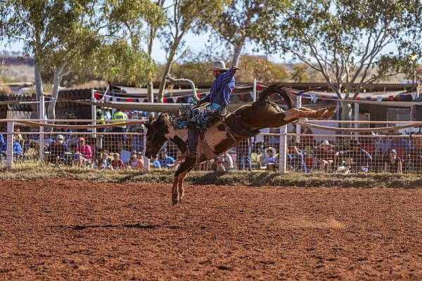 Rodeo With My D850-rodeo-3.jpg