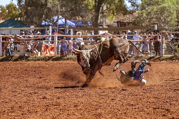 Rodeo With My D850-rodeo-5.jpg
