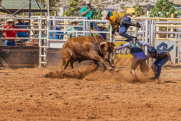 Aussie Local Rodeo-rodeo-1.jpg