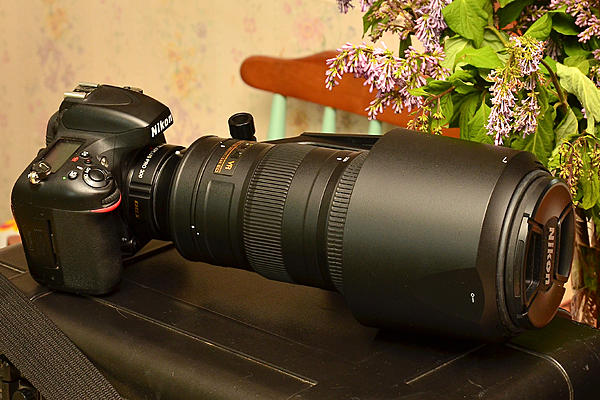 Nikon 200-500/5.6 VR Lens....... post your photos!-dsc_7107-jesse-lake-tc-birding-0161.jpg