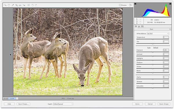 Up-sizing in ACR-screen-shot-04-24-15-08.13-am.jpg