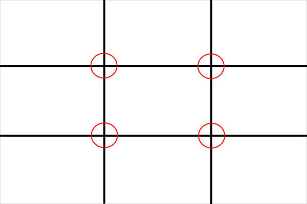 Composition #2: The Rule of Thirds-rots-grid-circles.jpg