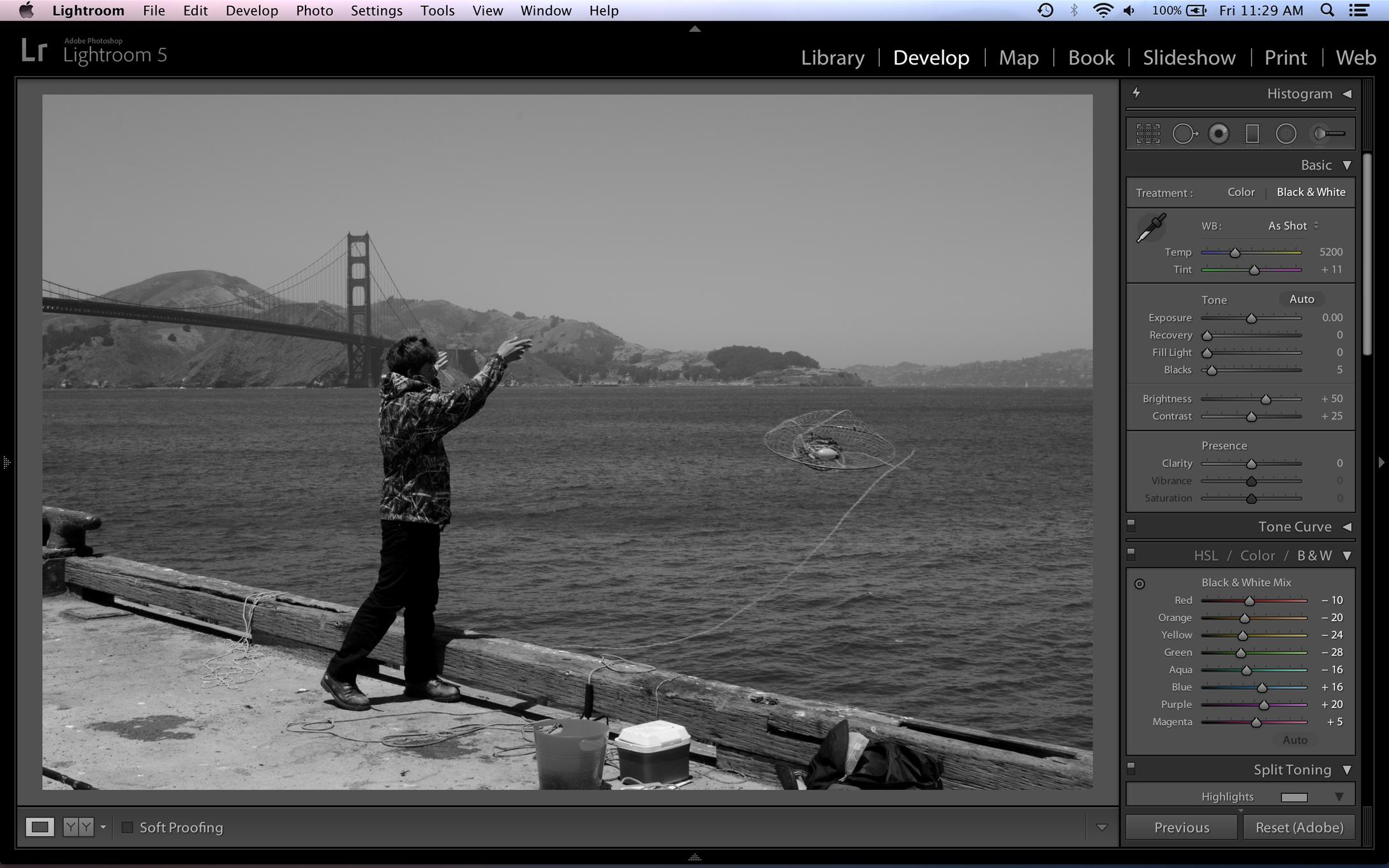 Better B&W Conversion Using Multiple Hue/Saturation Layers in Photoshop & Elements-screen-shot-2014-01-10-11.29.58-am.jpg