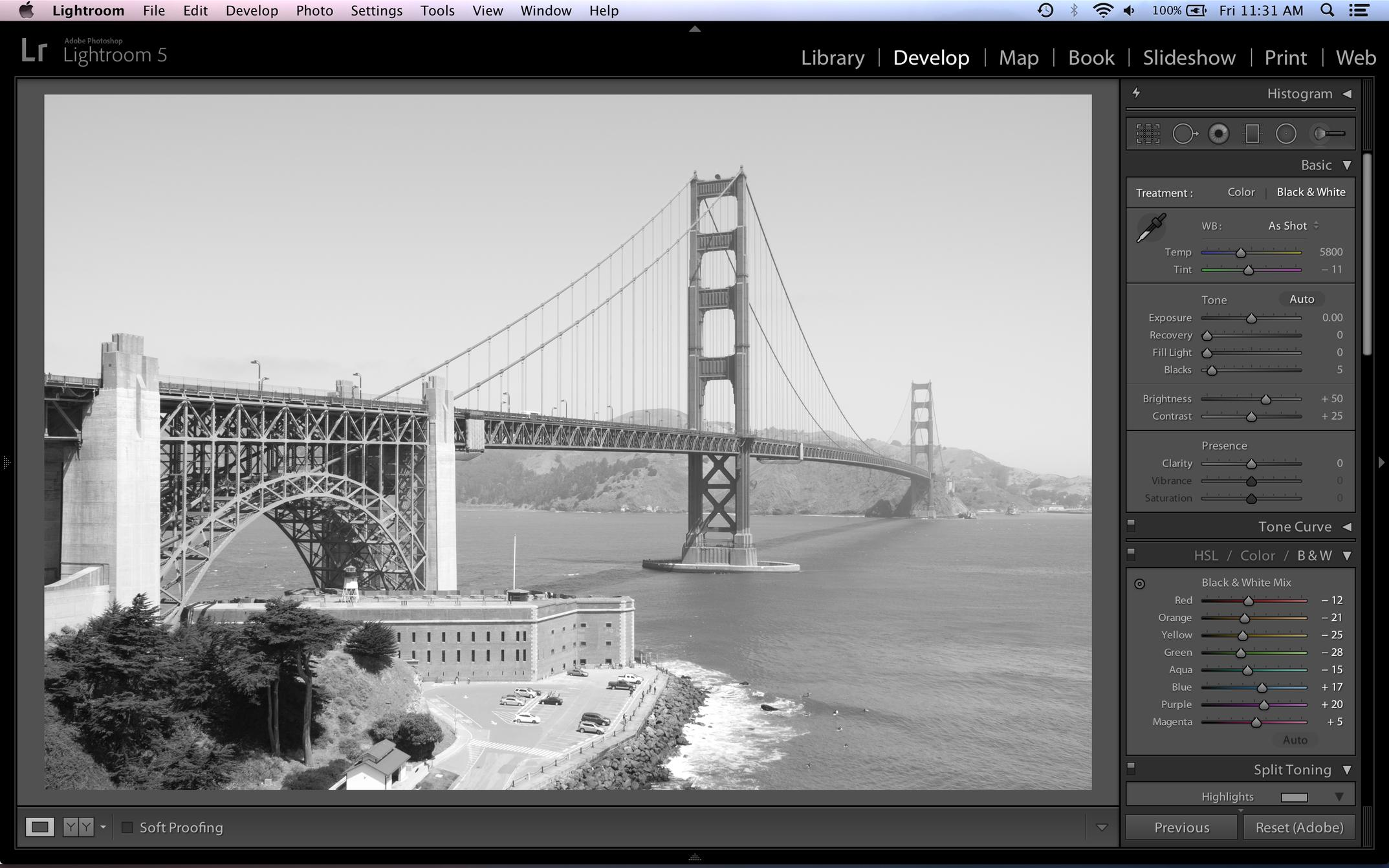 Better B&W Conversion Using Multiple Hue/Saturation Layers in Photoshop & Elements-screen-shot-2014-01-10-11.31.07-am.jpg