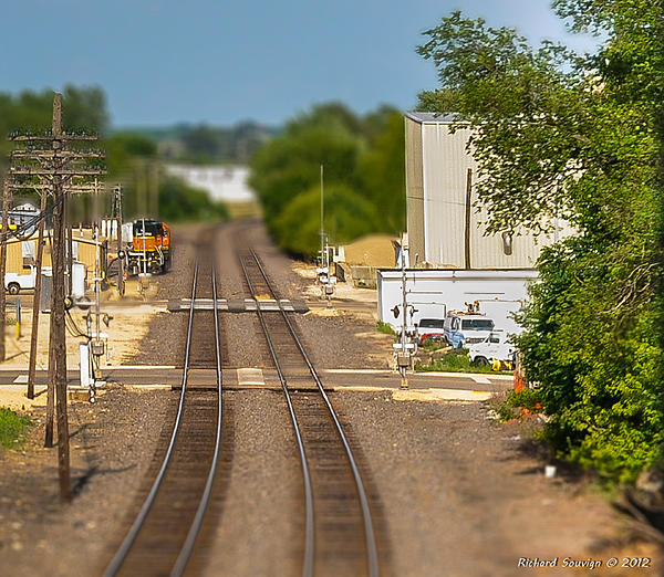 Weekly Challenge June 10 - June 17:  Miniature/Small-scale-dsc_7414-2.jpg
