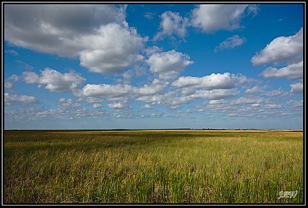 Weekly Challenge Mar. 7 - 14: Cloudscapes and Shadows-_71d3949.jpg