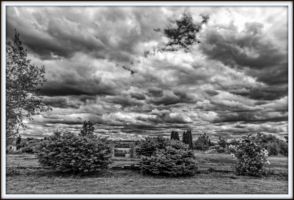 Weekly Challenge MAY 16 - 23: Landscape in Black and White-750_9761-hdr-edit.jpg