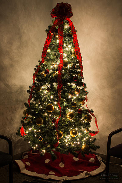 Weekly Challenge Dec. 5 - 12: Holiday Lights-hoilday-lights-007-resized.jpg