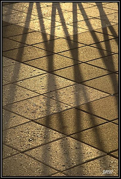Weekly Challenge Mar. 27 - Apr. 2: Repetition/Repeating Patterns-_71d8873.jpg
