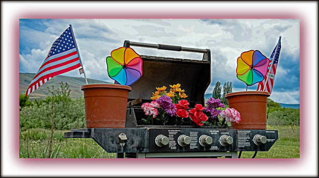 Weekly Challenge May 15 - 21: BBQ Grill-750_1197-edit.jpg