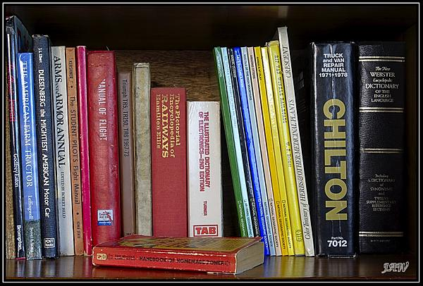 Weekly Challenge July 30 - August 6: Books-_71d0008.jpg