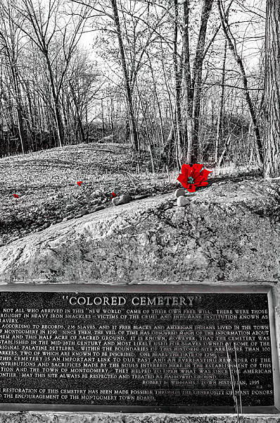 Weekly Challenge Nov. 20 - 26: Selective Color-colored-cemetery-color-select-stacked-photo-1-1-.jpg