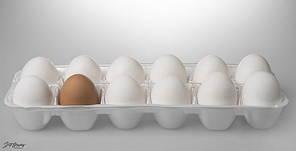 Weekly Challenge Dec. 4 - 10: Contrasts-eggs.jpg