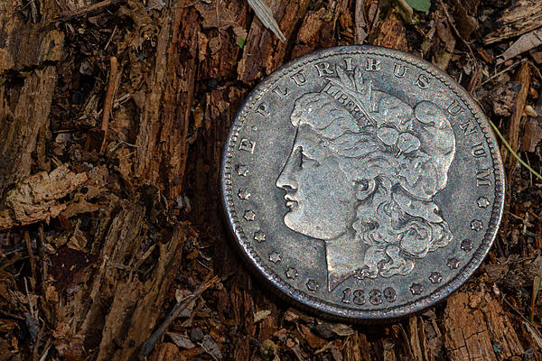 Weekly Challenge May 12 - 18: Coin(s)-_dsc5819_004.jpg