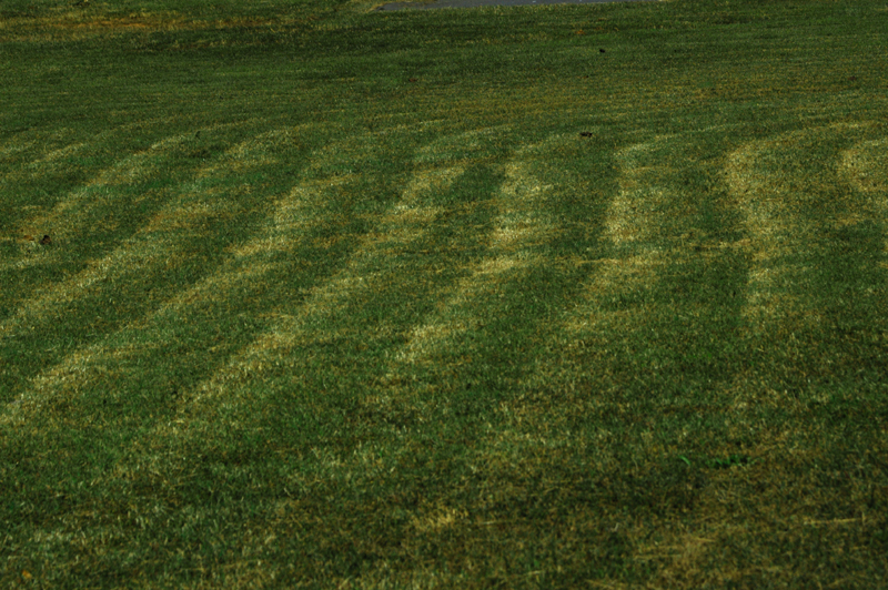 Patterns For Lawn Mowing - EzineArticles Submission - Submit Your