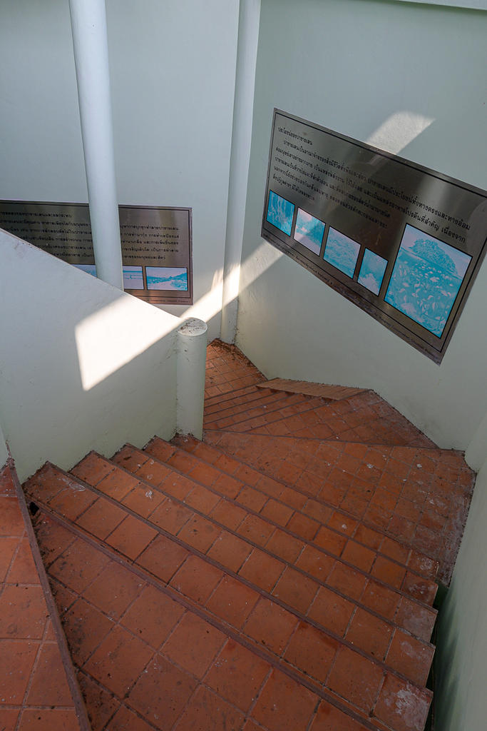 Post your Z50 images-stairs-1.jpg