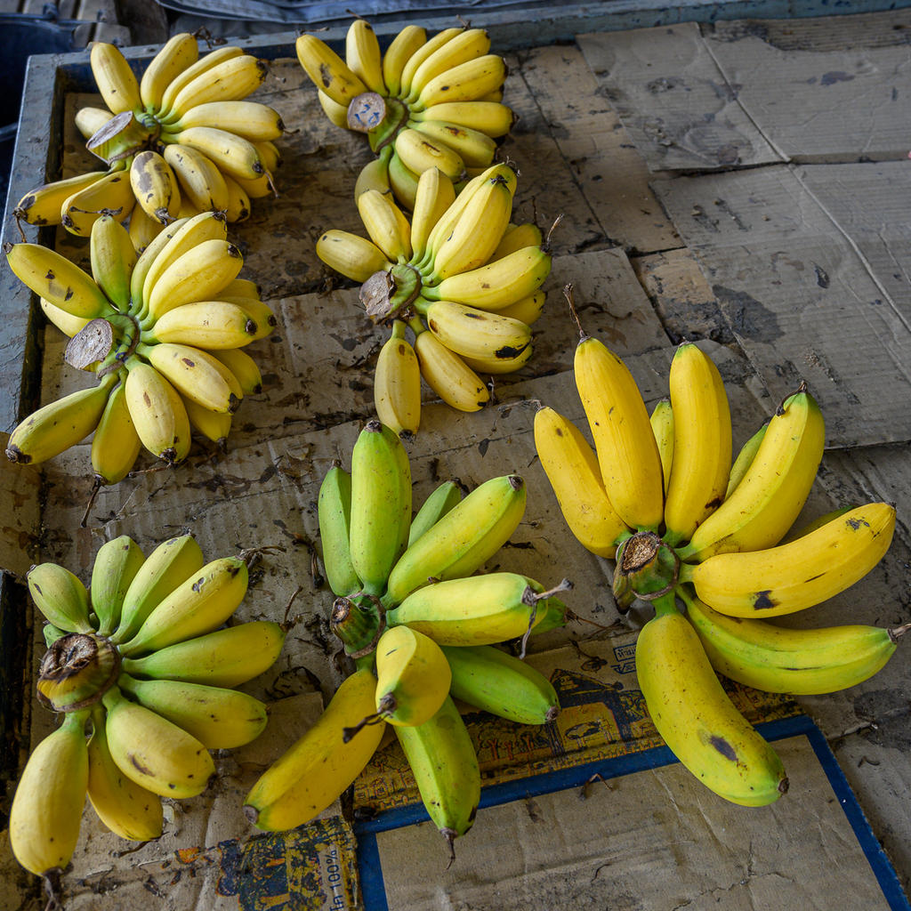 Post your Z50 images-bananas-2.jpg