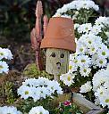 Daisies by Marilynne in Plants
