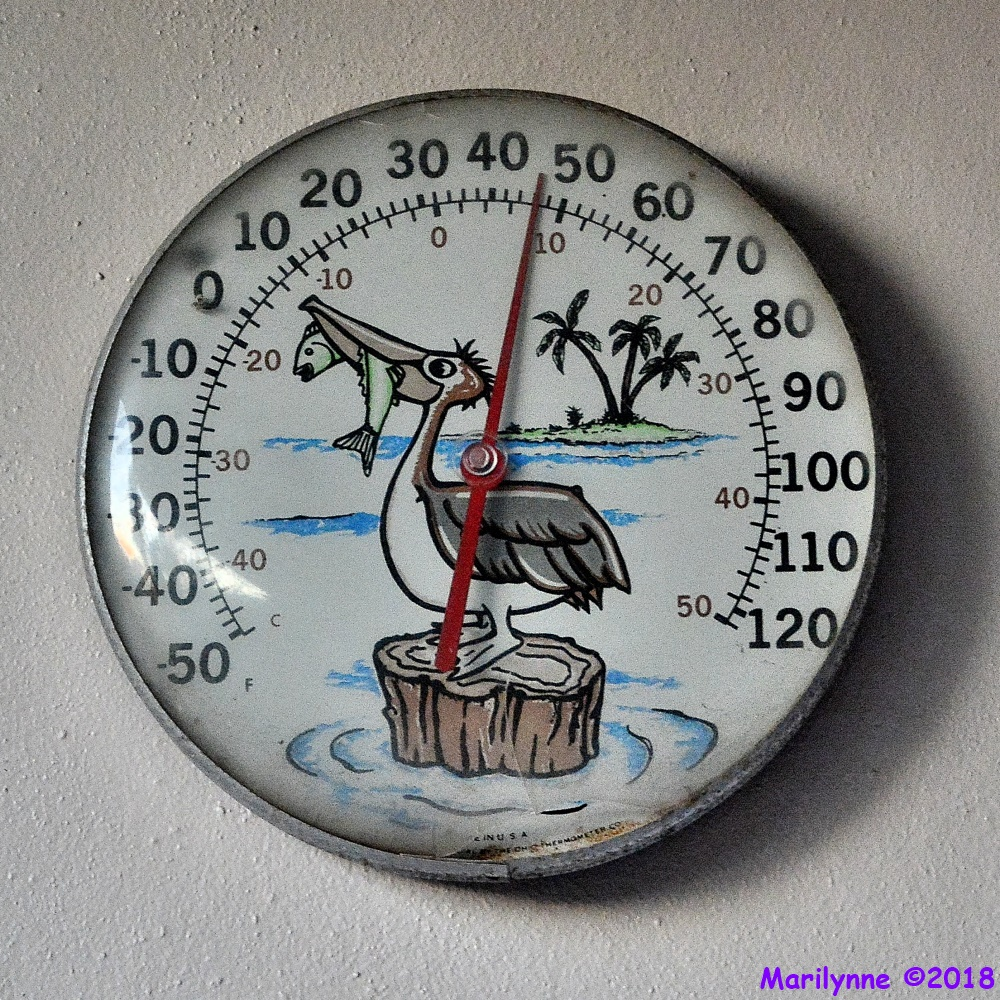Thermometer by Marilynne in Stuff