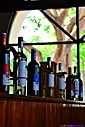 Gumbo Limbo and Wine Bottles by Marilynne in Landscape