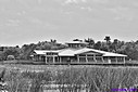 Green Cay Nature Center by Marilynne in B/W